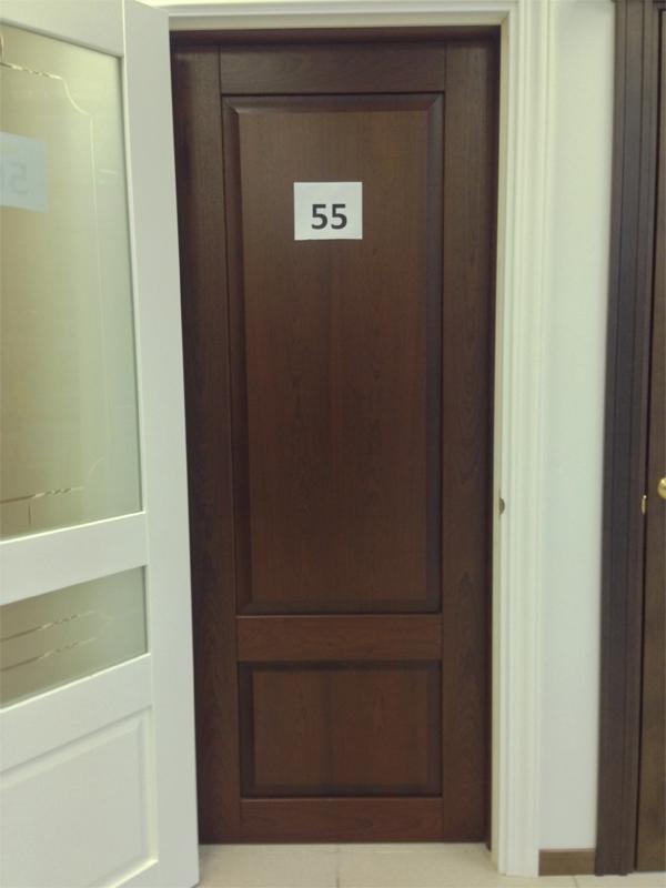 Дверь 55