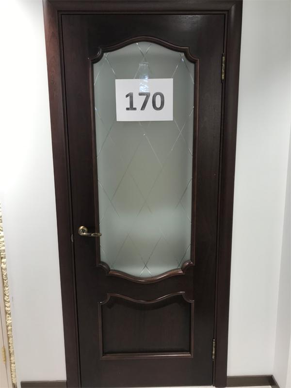 Дверь 170