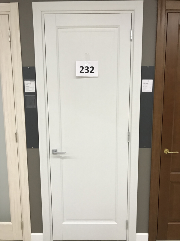 Дверь 232