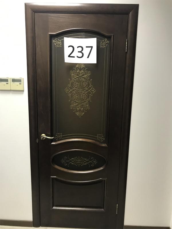 Дверь 237