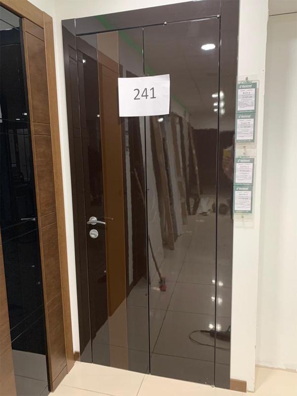 Дверь 241