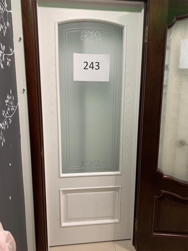 Дверь 243